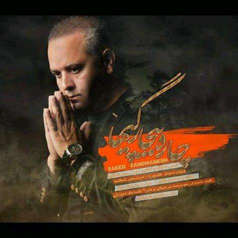 دانلود آهنگ «چاره بیچارگیها» با صدای سعید زندمنش + متن