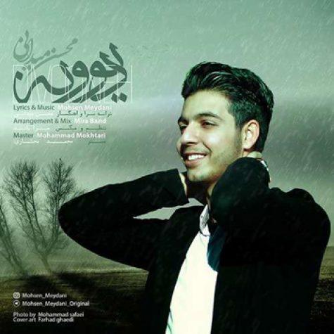 دانلود آهنگ جدید محسن میدانی به نام دیوونه