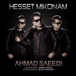 دانلود آهنگ جدید احمد سعیدی به نام حست نمیکنم