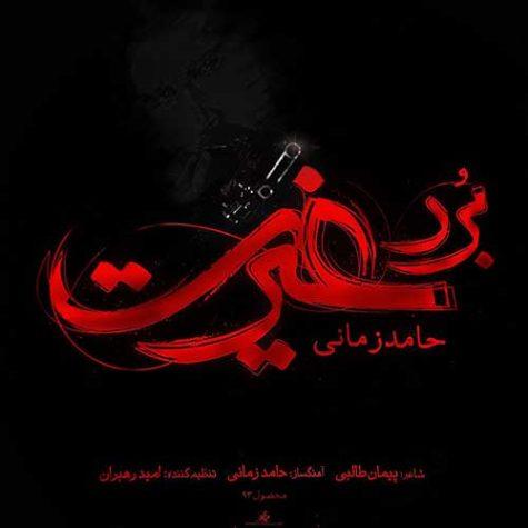 حامد زمانی برد غیرت