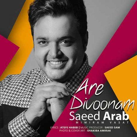 سعید عرب آره دیوونم